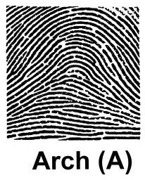 arch pattern